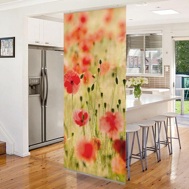 Produktfoto Raumteiler - Summer Poppies 250x120cm