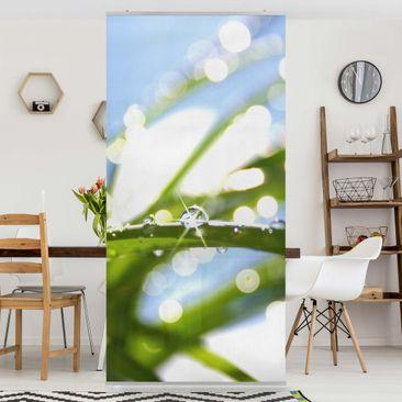 Produktfoto Raumteiler - Kiss of Sun 250x120cm