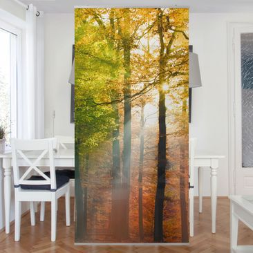Produktfoto Raumteiler - Morning Light 250x120cm