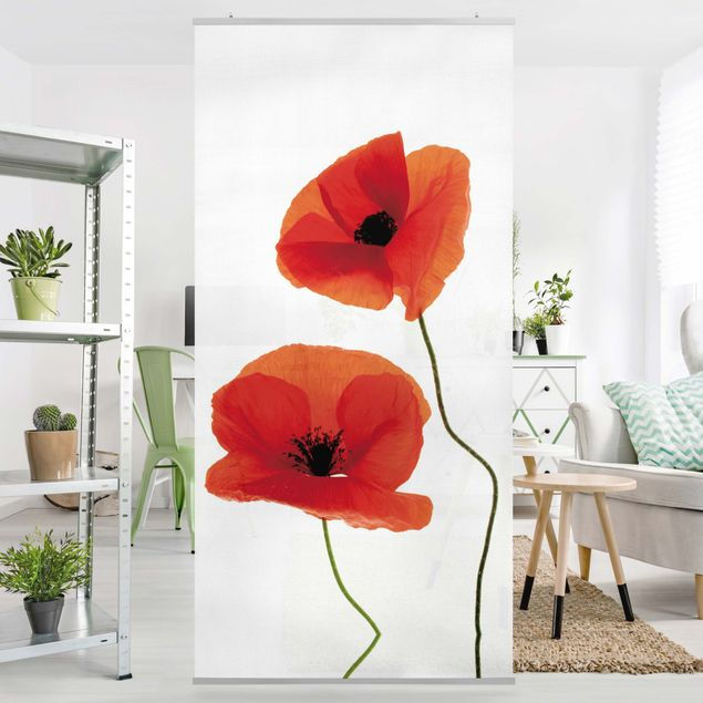 Produktfoto Raumteiler - Charming Poppies 250x120cm