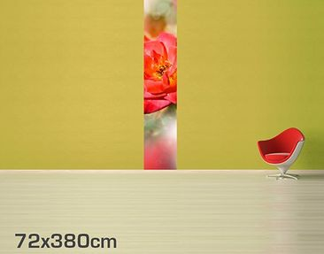 Product picture Photo Wall Mural no.YK19 Shining Rose