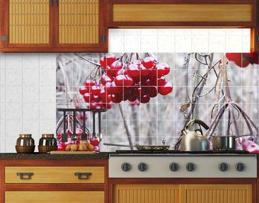 Product picture Tile Mural No.CA42 forest fruits