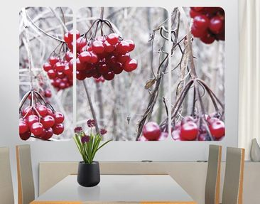 Product picture Wall Mural no.CA42 Forest Fruits...