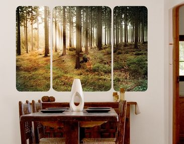 Produktfoto Wall Mural no.CA48 Morning Forest...