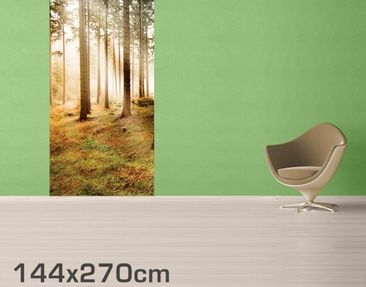 Product picture Photo Wall Mural no.CA48 Morning Forest