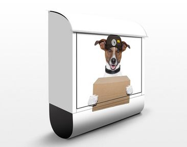 Product picture Design Letter Box Dog With Package...