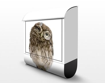 Product picture Design Letter Box Curious Owl 39x46x13cm