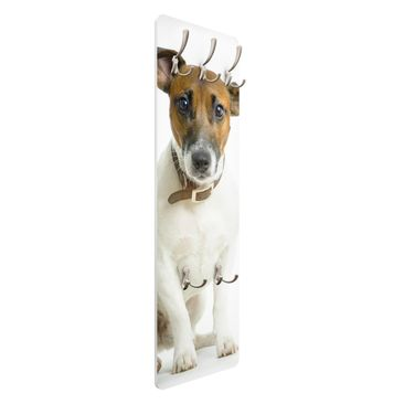 Product picture Coat Rack - Dackelblick 139x46x2cm