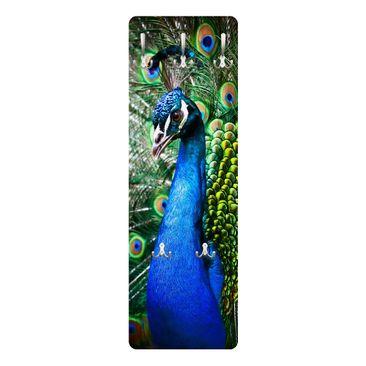 Produktfoto Garderobe - Edler Pfau - Blau