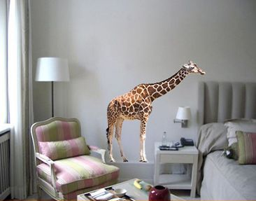 Product picture Wall Decal no.301 Giraffe