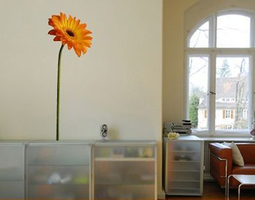 Produktfoto Wall Decal no.SB10 Gerbera