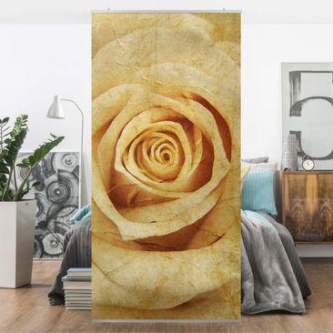 Produktfoto Raumteiler - Vintage Rose 250x120cm