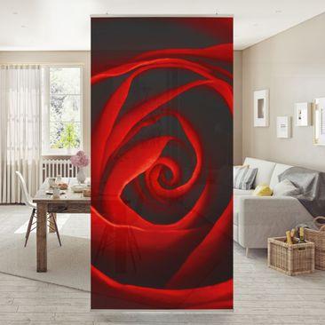 Produktfoto Raumteiler - Liebliche Rose 250x120cm