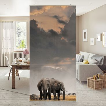 Immagine del prodotto Tenda a pannello Elephants in the Savanna 250x120cm