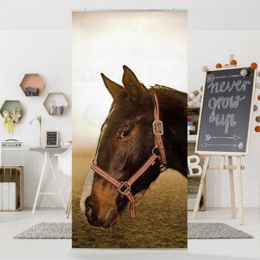 Produktfoto Raumteiler Kinderzimmer - Early Horse 250x120cm