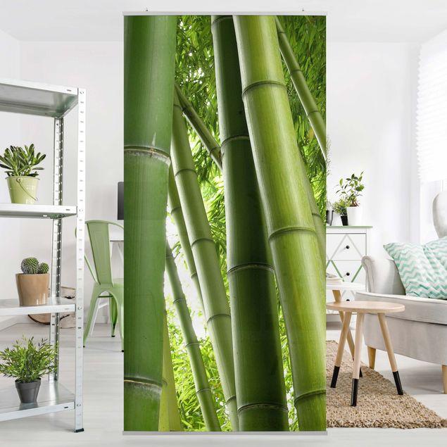 Produktfoto Raumteiler - Bamboo Trees 250x120cm