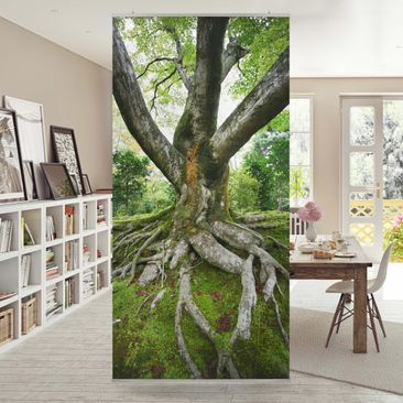Product picture Panel Curtain Old Tree 250x120cm