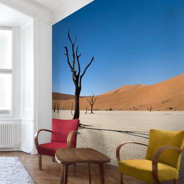 Produktfoto Fototapete Wüste - Das Sossusvlei in Namibia - Vliestapete Premium Quadrat