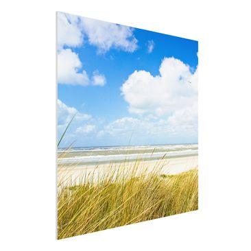 Produktfoto Forex Fine Art Print - Wandbild An der Nordseeküste - Quadrat 1:1