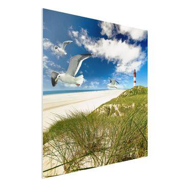Produktfoto Forex Fine Art Print - Wandbild Dune Breeze - Quadrat 1:1