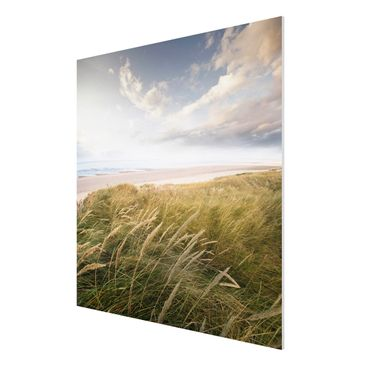 Product picture Forex Fine Art Print - Mural Dunes Dream...