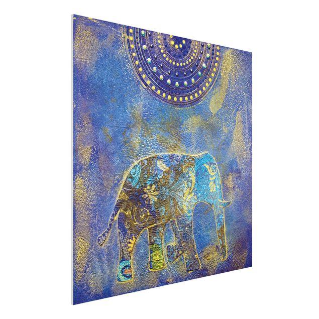 Forex Fine Art Print - Wandbild Elephant...