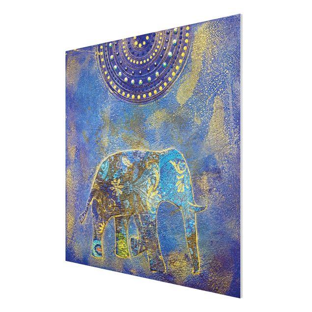 Produktfoto Forex Fine Art Print - Wandbild Elephant in Marrakech - Quadrat 1:1