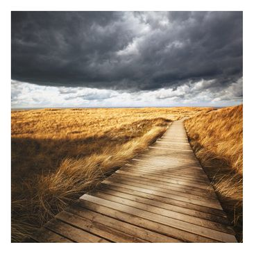 Product picture Forex Fine Art Print - Mural Pathway...