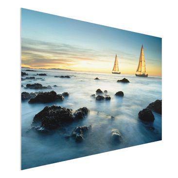 Immagine del prodotto Stampa su Forex - Sailboats in the ocean - Orizzontale 2:3