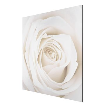 Product picture Aluminium Print - Mural Pretty White...