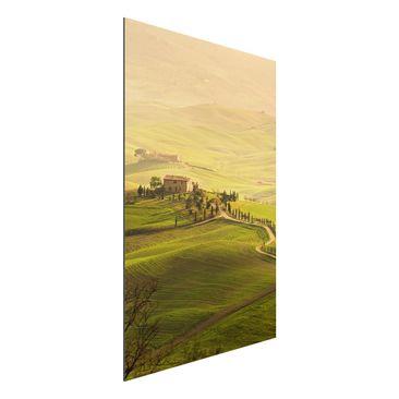 Immagine del prodotto Stampa su alluminio - Chianti Tuscany - Verticale 3:2