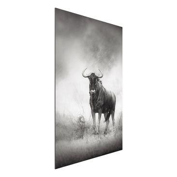 Produktfoto Aluminium Print - Wandbild Staring Wildebeest - Hoch 3:2