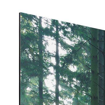 Product picture Aluminium Print - Mural Enlightened...