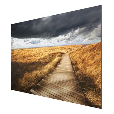 Product picture Aluminium Print - Mural Pathway Through...