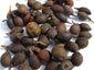 Laurel seeds whole 001
