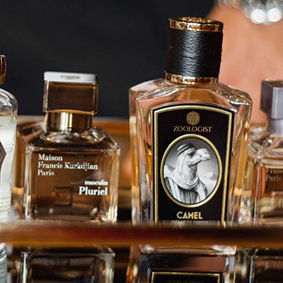 Luxurious autumn scents for men
