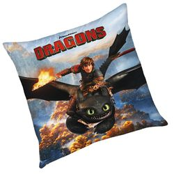 Hicks & Ohnezahn | Kinder Kissen 40 x 40 cm | DreamWorks Dragons | Dekokissen 001