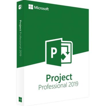Microsoft PROJECT 2019 Professional • DE & Multilingual • ONLINE-Aktivierung • Download • Vollversion – Bild 2