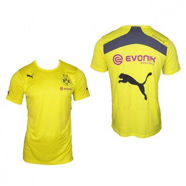 Puma BVB Borussia Dortmund Performance Tee 2013 / 2014