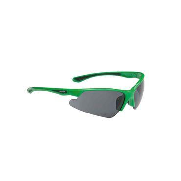 Alpina Levity Sportbrille – Bild 1