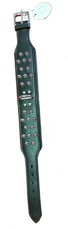Hundehalsband 976 Altes Modell Restposten