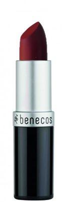 Natural Lipstick catwalk