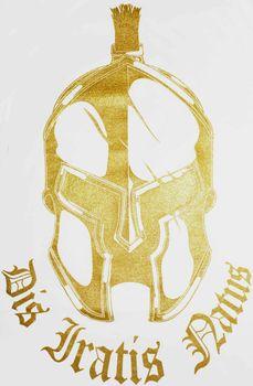 DIS IRATIS NATUS (D.I.N.) Herren T-Shirt Basic Gladiator Helm gold weiß rundhals – Bild 5