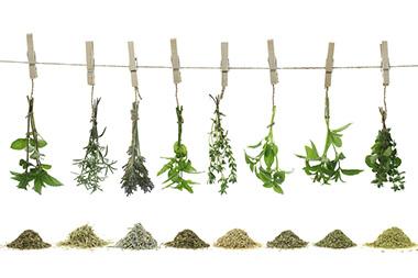 Kräuter Gewürze & Tee