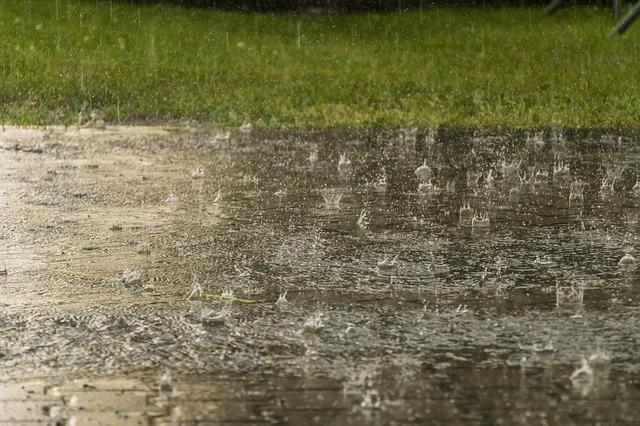 Unser Herbst-Regen Rabattcode: RKNMEB