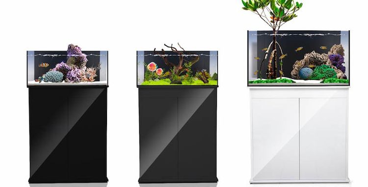 Fusion Micro 30L High Gloss White Stand – image 4