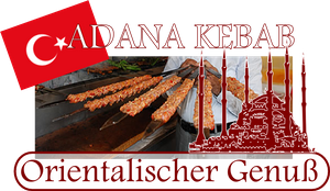 [Paket] Beeketal Kebab Maker Wurstfüller ADANA KEBAB DÖNER Kabab Koobideh 7L horizontal BTH07K