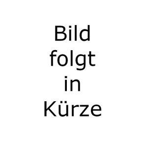 adidas DFB Trikot Minikit Heimtrikotset 4Sterne Deutschland WM 2014 – Bild 2
