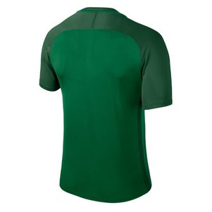 Nike Dry Team Trophy III Fußballtrikot  – Bild 2