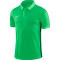 Nike Academy 18 Poloshirt grün